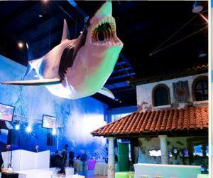 Atlantis Marine World Amusement Parks Places